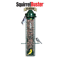 feeder-squirrel-proof